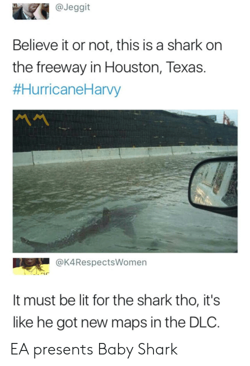 Lit, Shark, and Houston: @Jeggit  Believe it or not, this is a shark on  the freeway in Houston, Texas.  #HurricaneHarvy  MM  @K4RespectsWomen  It must be lit for the shark tho, it's  like he got new maps in the DLC. EA presents Baby Shark