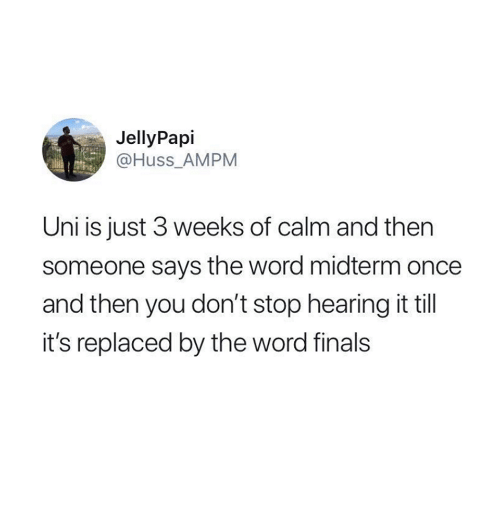 midterm: JellyPapi  @Huss_AMPM  Uni is just 3 weeks of calm and then  someone says the word midterm once  and then you don't stop hearing it til  it's replaced by the word finals