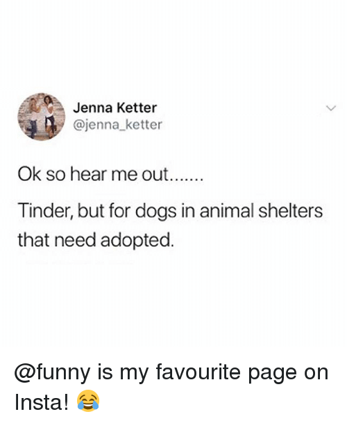 Dogs, Funny, and Memes: Jenna Ketter  @jenna_ketter  Ok so hear me out  Tinder, but for dogs in animal shelters  that need adopted. @funny is my favourite page on Insta! 😂