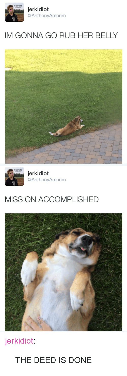 """The Deed Is Done: jerkidiot  @AnthonyAmorim  IM GONNA GO RUB HER BELLY   jerkidiot  @AnthonyAmorim  MISSION ACCOMPLISHED <p><a class=""""tumblr_blog"""" href=""""http://jerkidiot.com/post/87334518573/the-deed-is-done"""" target=""""_blank"""">jerkidiot</a>:</p> <blockquote> <p>THE DEED IS DONE</p> </blockquote>"""