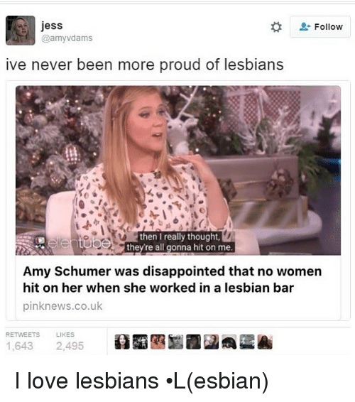Amy Schumer, Memes, and 🤖: jess  Follow  amy dams  ive never been more proud of lesbians  then I really thought,  they re all gonna hit on me  Amy Schumer was disappointed that no women  hit on her when she worked in a lesbian bar  pinknews.co.uk  RETWEETS LIKES  1,643  2,495 I love lesbians •L(esbian)