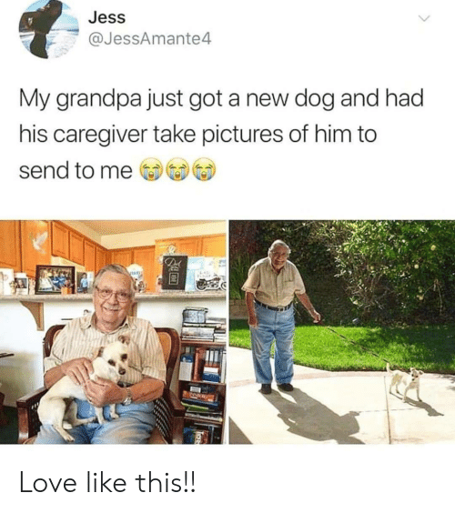 jess: Jess  @JessAmante4  My grandpa just got a new dog and had  his caregiver take pictures of him to  send to me  De Love like this!!