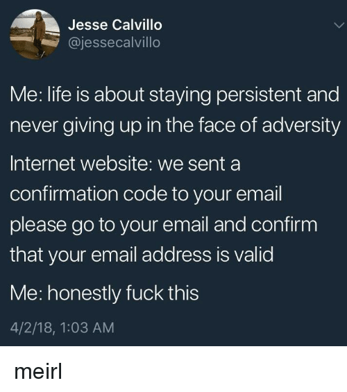 adversity: Jesse Calvillo  @jessecalvillo  Me: life is about staying persistent and  never giving up in the face of adversity  Internet website: we senta  confirmation code to your email  please go to your email and confirm  that your email address is valid  Me: honestly fuck this  4/2/18, 1:03 AM meirl