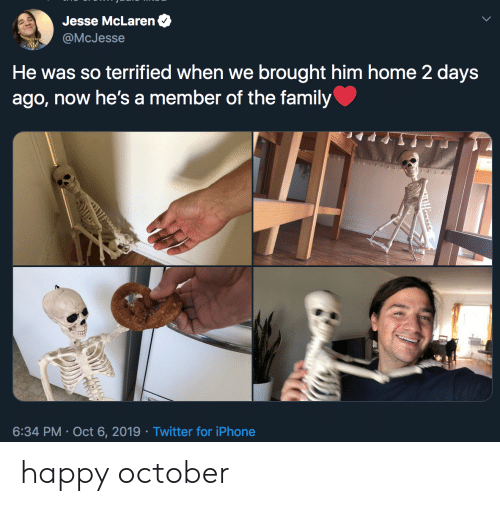 terrified: Jesse McLaren  @McJesse  He was so terrified when we brought him home 2 days  ago, now he's a member of the family  6:34 PM Oct 6, 2019 Twitter for iPhone  Tooses happy october