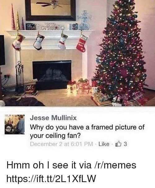 December 2: Jesse Mullinix  Why do you have a framed picture of  your ceiling fan?  December 2 at 6:01 PM . Like 3 Hmm oh I see it via /r/memes https://ift.tt/2L1XfLW