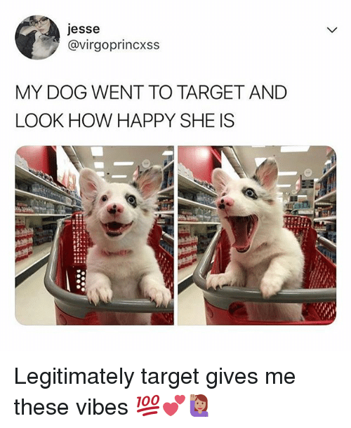 Memes, Target, and Happy: jesse  @virgoprincxss  MY DOG WENT TO TARGET AND  LOOK HOW HAPPY SHE IS Legitimately target gives me these vibes 💯💕🙋🏽