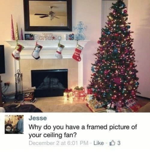 December 2: Jesse  Why do you have a framed picture of  your ceiling fan?  December 2 at 6:01 PM  Like 3