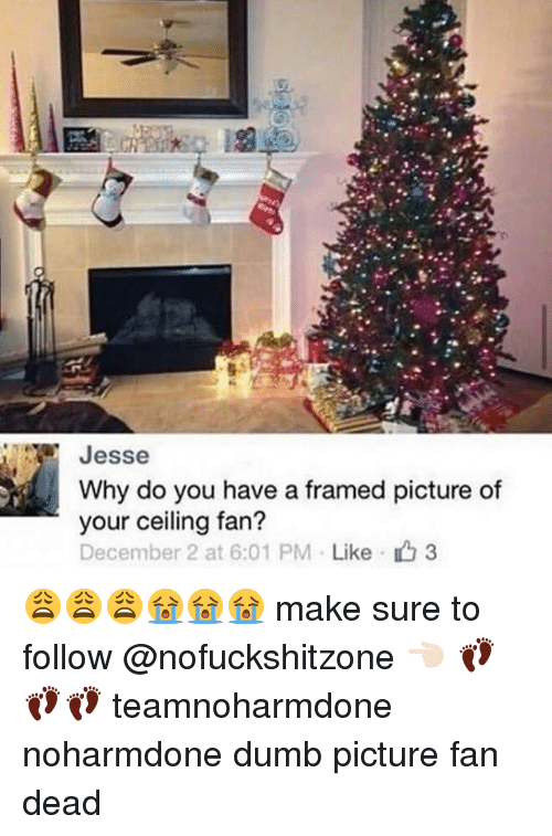 December 2: Jesse  Why do you have a framed picture of  your ceiling fan?  December 2 at 6:01 PM  Like 3 😩😩😩😭😭😭 make sure to follow @nofuckshitzone 👈🏻 👣👣👣 teamnoharmdone noharmdone dumb picture fan dead