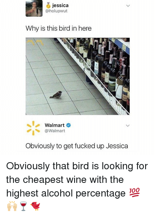 Memes, Walmart, and Wine: jessica  @holupwut  Why is this bird in here  Walmart  @Walmart  Obviously to get fucked up Jessica Obviously that bird is looking for the cheapest wine with the highest alcohol percentage 💯🙌🏼🍷🐦