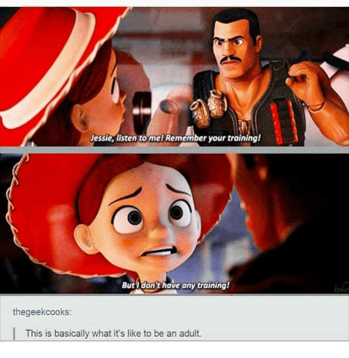Humans of Tumblr, Adult, and Remember: Jessie, listen to mel Remember your training!  Butydonthave any training  thegeekcooks  This is basically what it's like to be an adult.