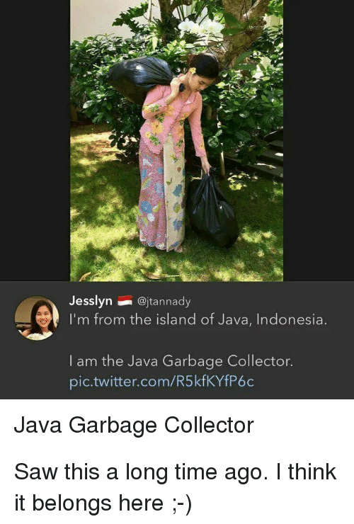 Indonesia: Jesslyn@jtannady  I'm from the island of Java, Indonesia  I am the Java Garbage Collector.  pic.twitter.com/R5kfKYfP6c  Java Garbage Collector Saw this a long time ago. I think it belongs here ;-)