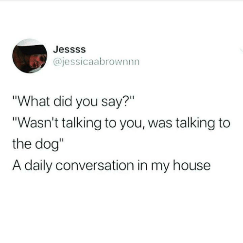 """what did you say: Jessss  @jessicaabrownnn  """"What did you say?""""  """"Wasn't talking to you, was talking to  the dog""""  A daily conversation in my house"""