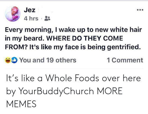 whole foods: Jez  4 hrs  Every morning, I wake up to new white hair  in my beard. WHERE DO THEY COME  FROM? It's like my face is being gentrified  You and 19 others  1 Comment It's like a Whole Foods over here by YourBuddyChurch MORE MEMES