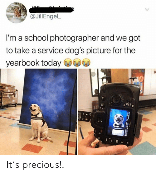 Yearbook: @JillEngel  I'm a school photographer and we got  to take a service dog's picture for the  yearbook today It's precious!!