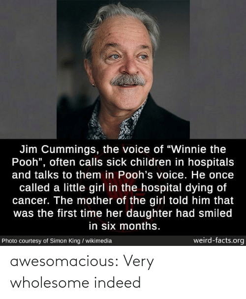 "little girl: Jim Cummings, the voice of ""Winnie the  Pooh"", often calls sick children in hospitals  and talks to them in Pooh's voice. He once  called a little girl in the hospital dying of  cancer. The mother of the girl told him that  was the first time her daughter had smiled  in six months.  weird-facts.org  Photo courtesy of Simon King / wikimedia awesomacious:  Very wholesome indeed"