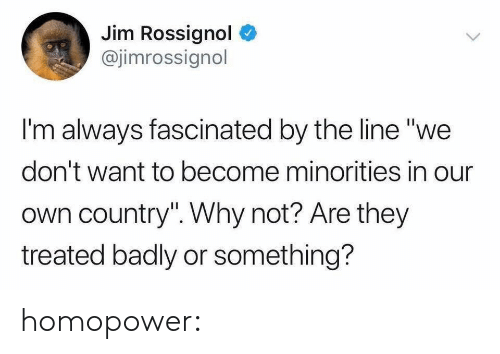 """Minorities: Jim Rossignol  @jimrossignol  I'm always fascinated by the line """"we  don't want to become minorities in our  own country"""". Why not? Are they  treated badly or something? homopower:"""