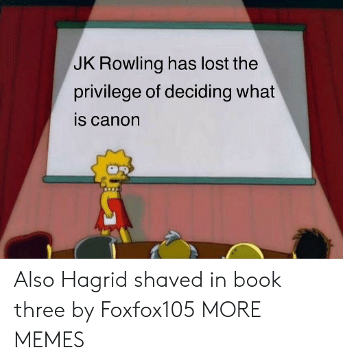 hagrid: JK Rowling has lost the  privilege of deciding what  is canon Also Hagrid shaved in book three by Foxfox105 MORE MEMES
