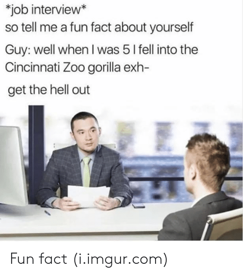 get the hell out: job interview*  so tell me a fun fact about yourself  Guy: well when I was 5 l fell into the  Cincinnati Zoo gorilla exh-  get the hell out Fun fact (i.imgur.com)