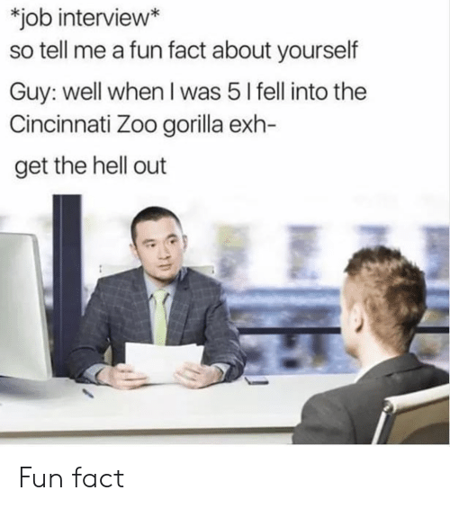 get the hell out: job interview*  so tell me a fun fact about yourself  Guy: well when I was 5 l fell into the  Cincinnati Zoo gorilla exh-  get the hell out Fun fact