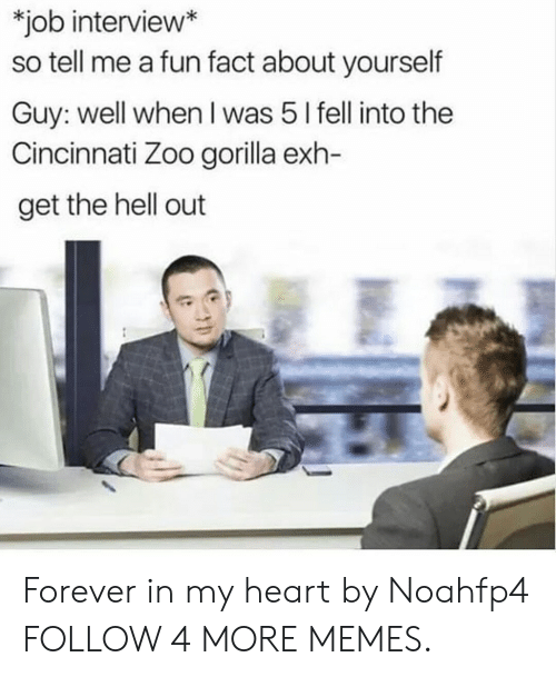 get the hell out: *job interview*  so tell me a fun fact about yourself  Guy: well when I was 5 I fell into the  Cincinnati Zoo gorilla exh-  get the hell out Forever in my heart by Noahfp4 FOLLOW 4 MORE MEMES.