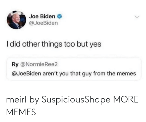 biden: Joe Biden  @JoeBiden  I did other things too but yes  Ry @NormieRee2  @JoeBiden aren't you that guy from the memes meirl by SuspiciousShape MORE MEMES