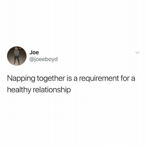 Funny, Joe, and For: Joe  @joeeboyd  Napping together is a requirement for a  healthy relationship