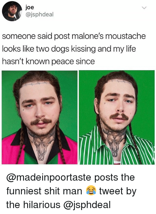 Dogs, Life, and Shit: joe  @jsphdeal  someone said post malone's moustache  looks like two dogs kissing and my life  hasn't known peace since @madeinpoortaste posts the funniest shit man 😂 tweet by the hilarious @jsphdeal