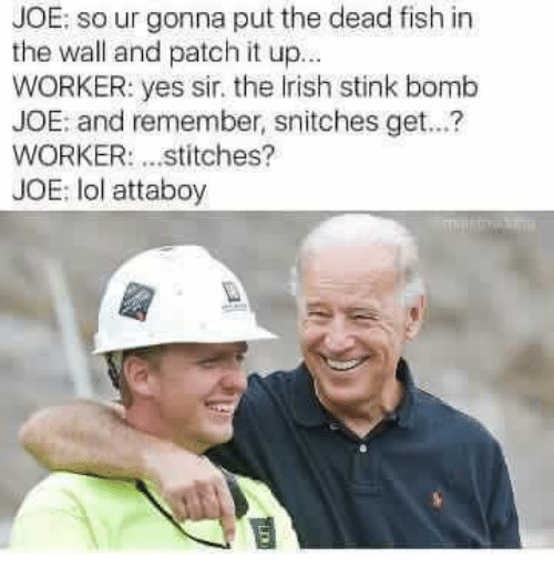 Irish, Memes, and Snitch: JOE: so ur gonna put the dead fish in  the wall and patch it up...  WORKER: yes sir, the Irish stink bomb  JOE: and remember, snitches get...?  WORKER: stitches?  JOE: lol attaboy