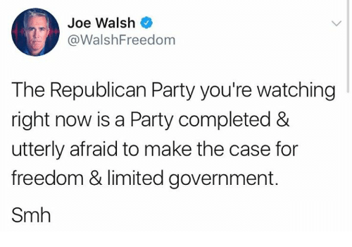 Governmentally: Joe Walsh  @WalshFreedom  The Republican Party you're watching  right now is a Party completed &  utterly afraid to make the case for  freedom & limited government.  Smh