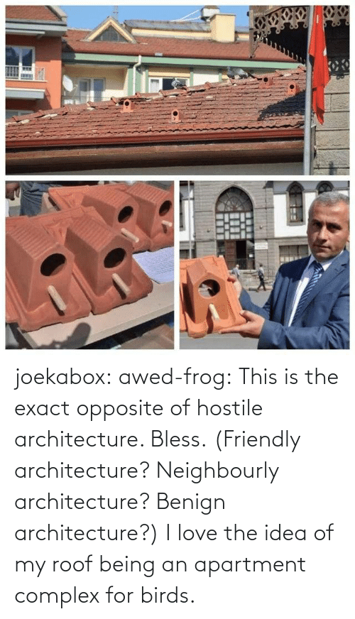 png: joekabox:  awed-frog:  This is the exact opposite of hostile architecture. Bless. (Friendly architecture? Neighbourly architecture? Benign architecture?)  I love the idea of my roof being an apartment complex for birds.