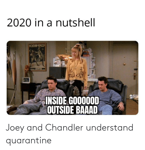 joey and chandler: Joey and Chandler understand quarantine