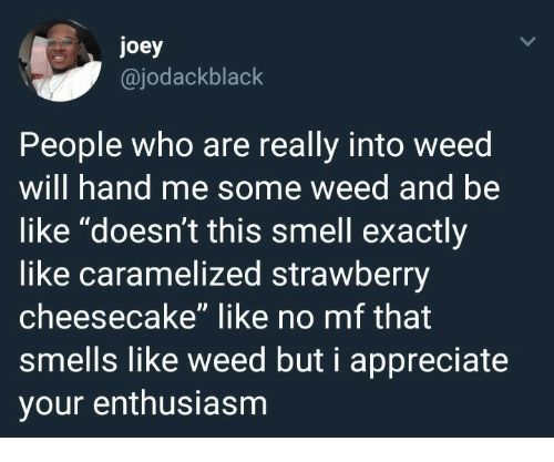 """cheesecake: joey  @jodackblack  People who are really into weed  will hand me some weed and be  like """"doesn't this smell exactly  like caramelized strawberry  cheesecake"""" like no mf that  smells like weed but i appreciate  your enthusiasm"""