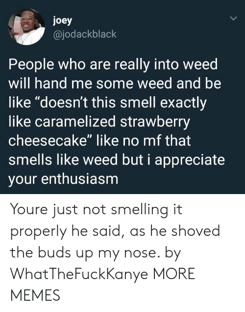 """cheesecake: joey  @jodackblack  People who are really into weed  will hand me some weed and be  like """"doesn't this smell exactly  like caramelized strawberry  cheesecake"""" like no mf that  smells like weed but i appreciate  your enthusiasm Youre just not smelling it properly he said, as he shoved the buds up my nose. by WhatTheFuckKanye MORE MEMES"""