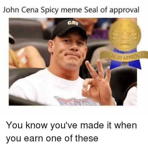Spicy Meme: John Cena Spicy meme Seal of approval  CAA You know you've made it when you earn one of these