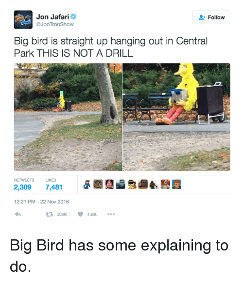 Memes, Big Bird, and Tron: Jon Jafari  Follow  @Jon Tron Show  Big bird is straight up hanging out in Central  Park THIS IS NOT A DRILL  RETWEETS LIKES  2,309  7,481  12:21 PM 22 Nov 2016  2.3K 7.5K  t Big Bird has some explaining to do.