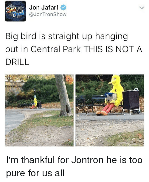 Memes, Big Bird, and Tron: Jon Jafari  @Jon Tron Show  Big bird is straight up hanging  out in Central Park THIS IS NOT A  DRILL I'm thankful for Jontron he is too pure for us all