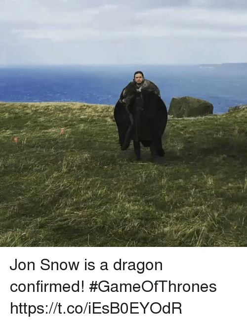 Jon Snow, Snow, and Dragon: Jon Snow is a dragon confirmed! #GameOfThrones https://t.co/iEsB0EYOdR