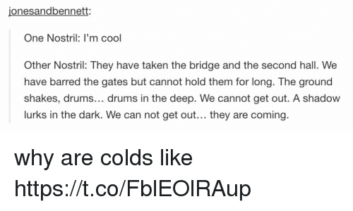 Memes, Taken, and Cool: jonesandbennett:  One Nostril: I'm cool  Other Nostril: They have taken the bridge and the second hall. We  have barred the gates but cannot hold them for long. The ground  shakes, drums... drums in the deep. We cannot get out. A shadow  lurks in the dark. We can not get out... they are coming why are colds like https://t.co/FblEOlRAup