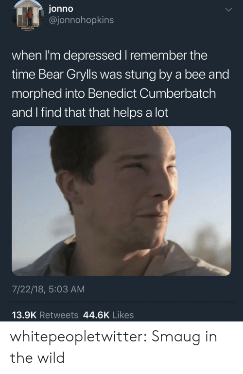 Benedict Cumberbatch: jonno  @jonnohopkins  when I'm depressed I remember the  time Bear Grylls was stung by a bee and  morphed into Benedict Cumberbatch  and I find that that helps a lot  7/22/18, 5:03 AM  13.9K Retweets 44.6K Likes whitepeopletwitter:  Smaug in the wild