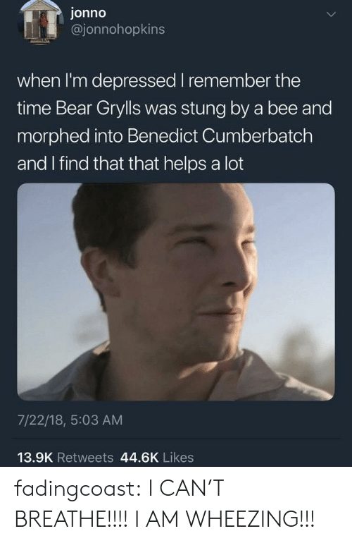 I Cant Breathe: jonno  @jonnohopkins  when I'm depressed I remember the  time Bear Gryls was stung by a bee and  morphed into Benedict Cumberbatch  and I find that that helps a lot  7/22/18, 5:03 AM  13.9K Retweets 44.6K Likes fadingcoast:  I CAN'T BREATHE!!!! I AM WHEEZING!!!