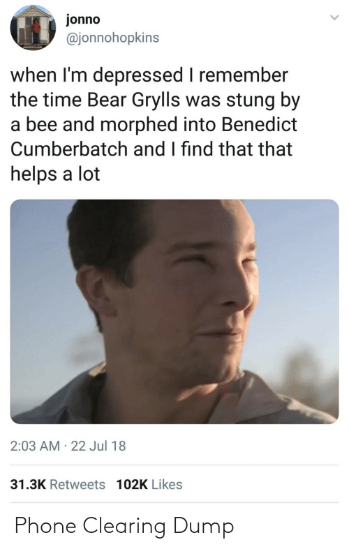 When Im: jonno  @jonnohopkins  when I'm depressed I remember  the time Bear Grylls was stung by  a bee and morphed into Benedict  Cumberbatch and I find that that  helps a lot  2:03 AM · 22 Jul 18  31.3K Retweets 102K Likes Phone Clearing Dump