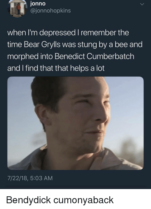 Benedict Cumberbatch: jonno  @jonnohopkins  when I'm depressed remember the  time Bear Grylls was stung by a bee and  morphed into Benedict Cumberbatch  and find that that helps a lot  7/22/18, 5:03 AM Bendydick cumonyaback