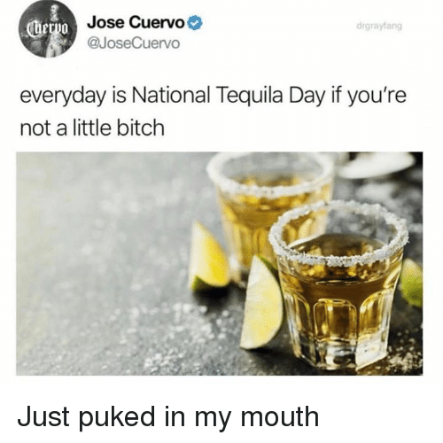 Bitch, Dank, and Tequila: Jose Cuervo  @JoseCuervo  drgrayfang  everyday is National Tequila Day if you're  not a little bitch Just puked in my mouth