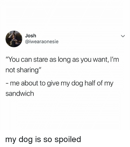 """Not Sharing: Josh  @iwearaonesie  """"You can stare as long as you want, I'm  not sharing""""  me about to give my dog half of my  sandwich my dog is so spoiled"""