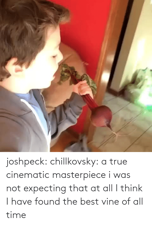 Best Vine: joshpeck:  chillkovsky:  a true cinematic masterpiece  i was not expecting that at all   I think I have found the best vine of all time