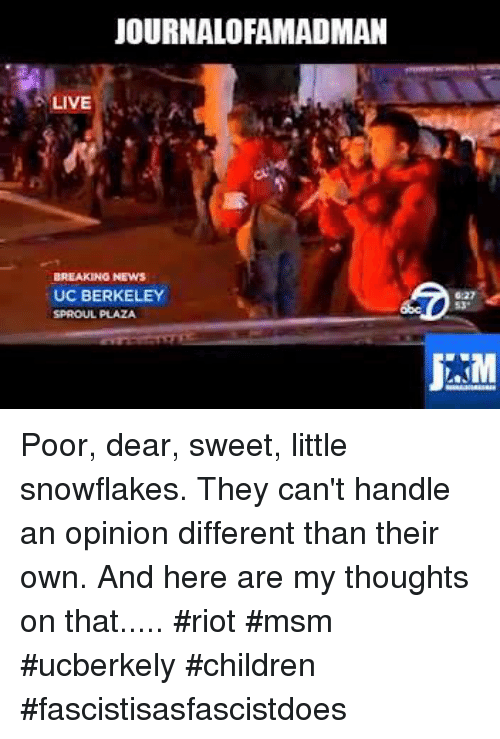 Memes, UC Berkeley, and Berkeley: JOURNALOFAMADMAN  LIVE  BREAKING NEWS  UC BERKELEY  SPROUL PLAZA Poor, dear, sweet, little snowflakes. They can't handle an opinion different than their own. And here are my thoughts on that..... #riot #msm #ucberkely #children #fascistisasfascistdoes