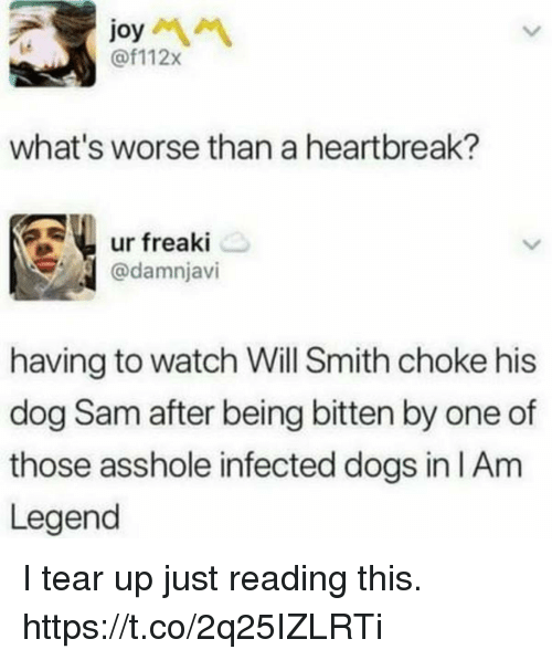 Dogs, Funny, and Will Smith: joy  @f112x  ie  what's worse than a heartbreak?  ur freaki  @damnjavi  having to watch Will Smith choke his  dog Sam after being bitten by one of  those asshole infected dogs in IAm  Legend I tear up just reading this. https://t.co/2q25IZLRTi