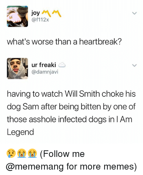 Dogs, Memes, and Will Smith: joy  @f112x  what's worse than a heartbreak?  ur freaki  @damnjavi  having to watch Will Smith choke his  dog Sam after being bitten by one of  those asshole infected dogs in lAm  Legend 😢😭😭 (Follow me @mememang for more memes)