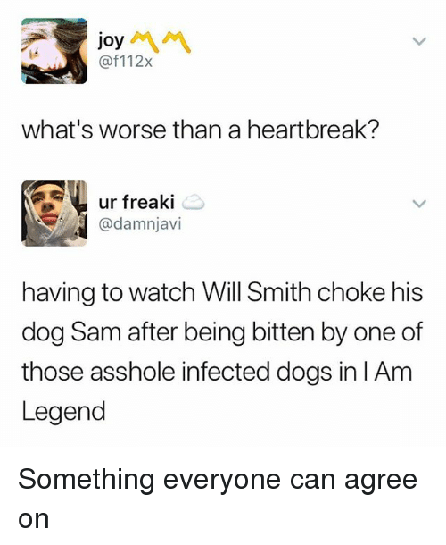 Dogs, Memes, and Will Smith: joy  @f112x  what's worse than a heartbreak?  ur freaki  @damnjavi  having to watch Will Smith choke his  dog Sam after being bitten by one of  those asshole infected dogs in lAm  Legend Something everyone can agree on