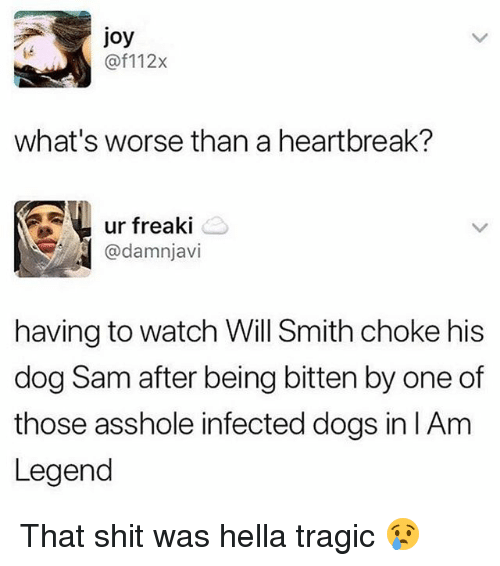 Dogs, Memes, and Shit: joy  @f112x  what's worse than a heartbreak?  ur freaki  @damnjavi  having to watch Will Smith choke his  dog Sam after being bitten by one of  those asshole infected dogs in lAm  Legend That shit was hella tragic 😢